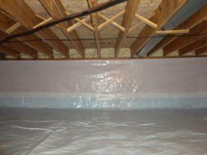 Basement Encapsulation mold testing in Virginia